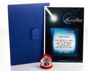 Zertifikat Sternschnuppe - Echte Meteoriten #1